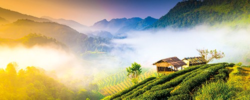 Thailand retirement places for foreign Expats